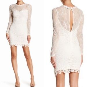 Romeo & Juliet Couture White Lace Fitted Dress
